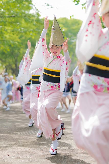 紅連、小金井子供フェスタでの阿波踊り、女踊りの女の子