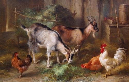 keçiler ve tavuklar yağlı boya tablosu