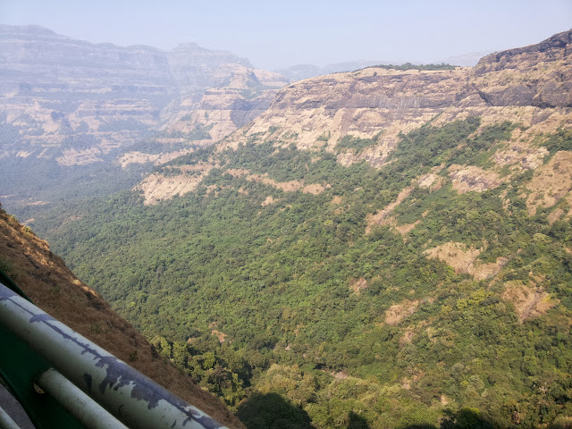 Malshej Ghat needle point
