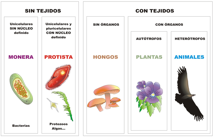 biologia icfes