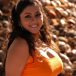 Namitha Latest Hot Images in Pachi Mirapakai Movie