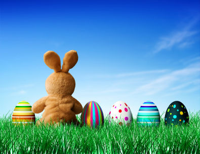 Lovely Easter Bunny Images and Pictures