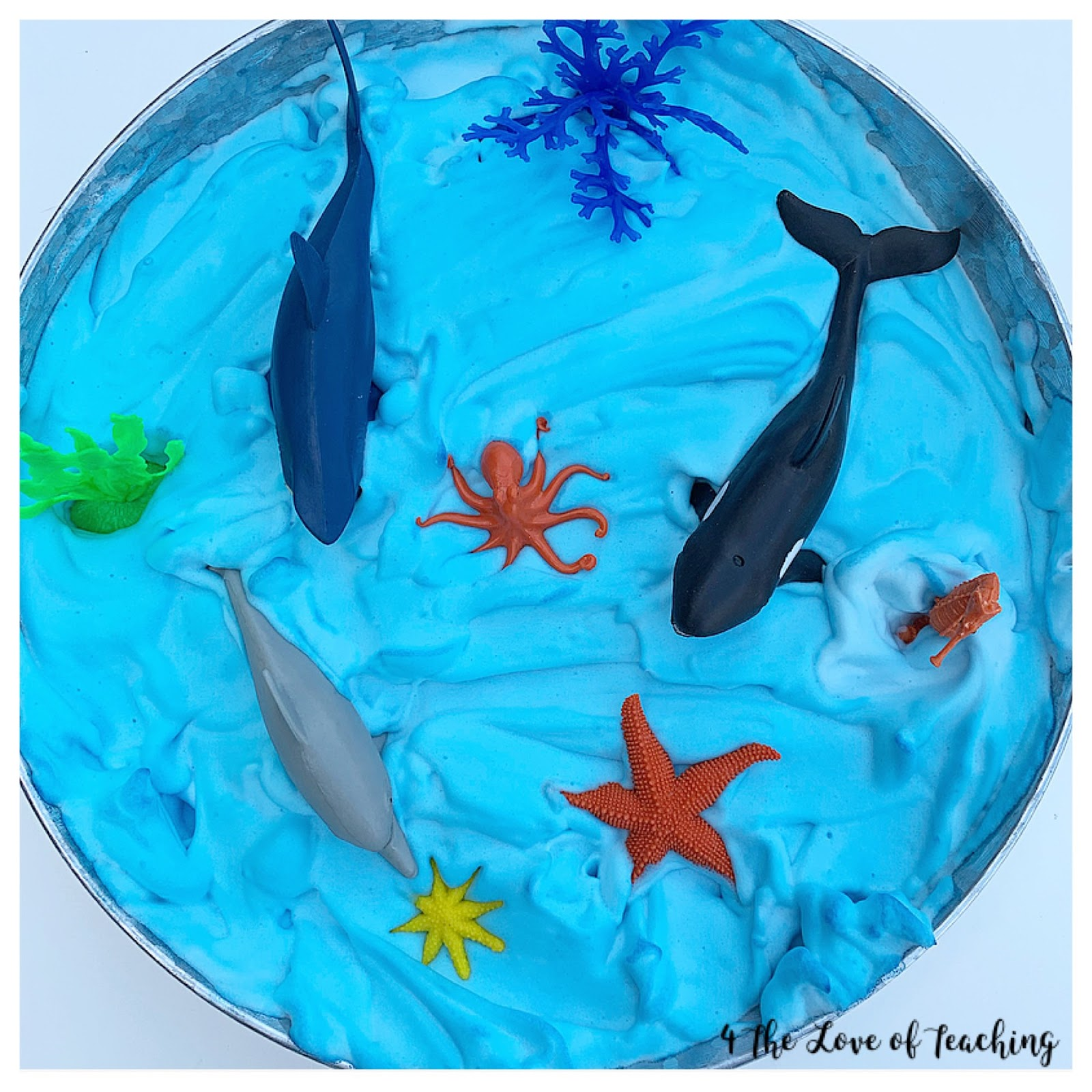 Under The Sea Sensory Activities