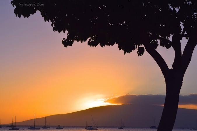 Hawaiian Sunset  - Ms. Toody Goo Shoes