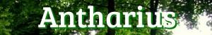 www.antharius.de