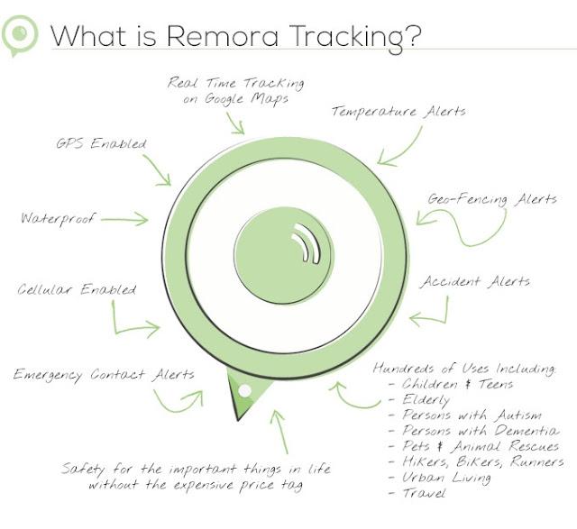 remora-tracking1