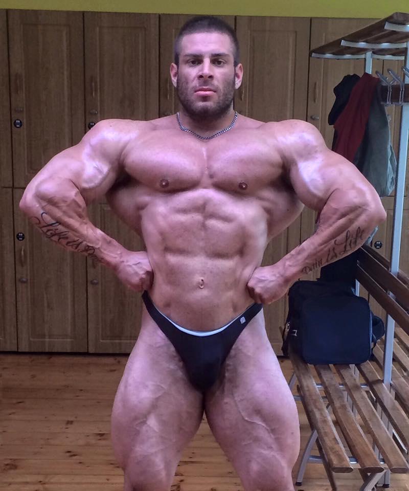 Gay Muscle Bodybuilder