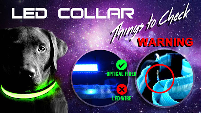 glow-in-the-dark-dog-collar