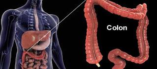 Ρώσος βιολόγος: «Ο θάνατος του ανθρώπου ξεκινάει από το στομάχι – Πώς θα καταλάβετε ότι κάτι δεν πάει καλά»
