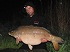 http://carptravel.blogspot.com/2014/05/big-fish-niekielka-okiem-carp-travel.html