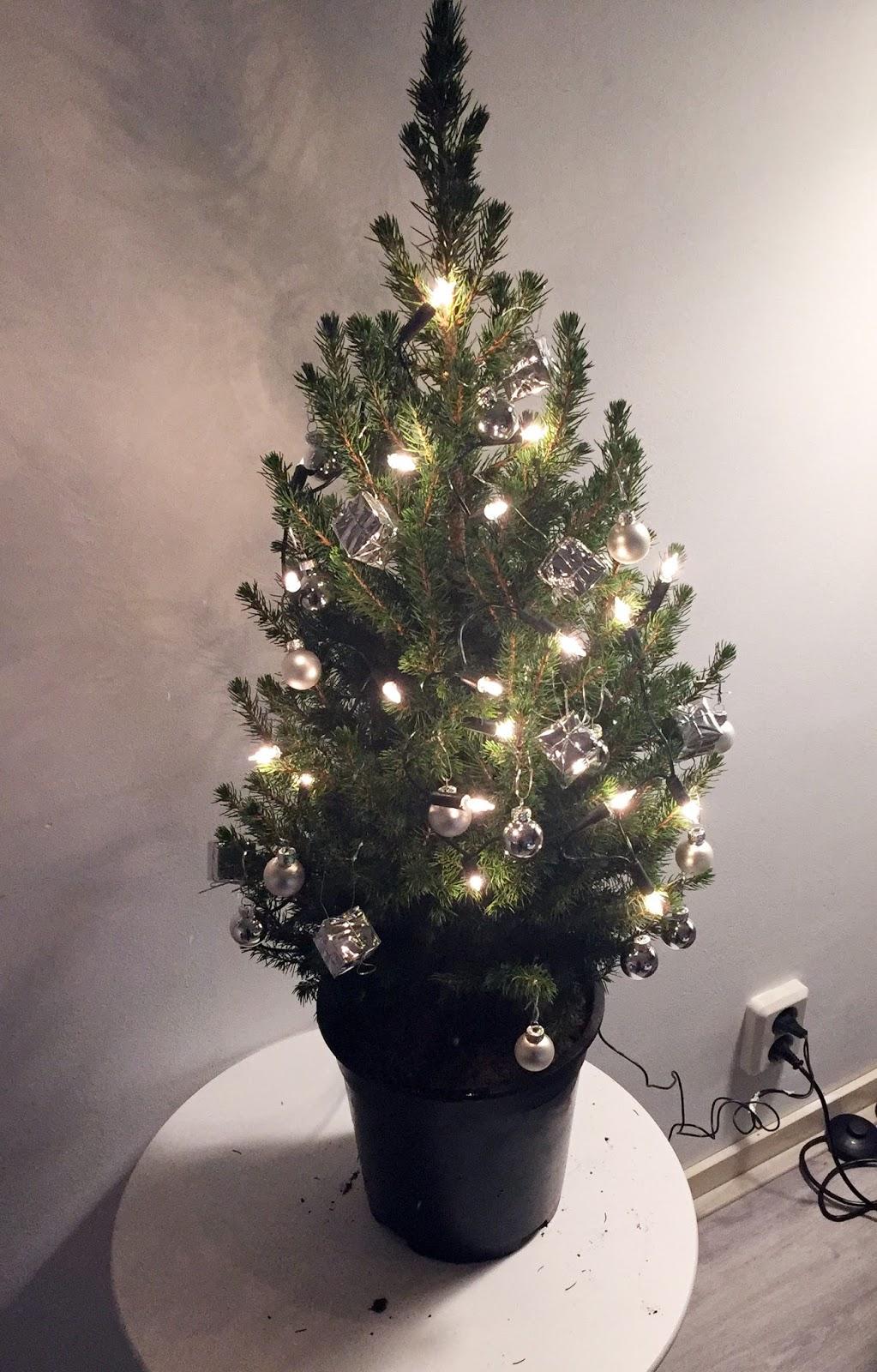 Kleine Kerstboom Kleine Kerstboom Met Verlichting 45ifm Best Cheap