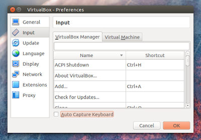 VirtualBox Input Preferences
