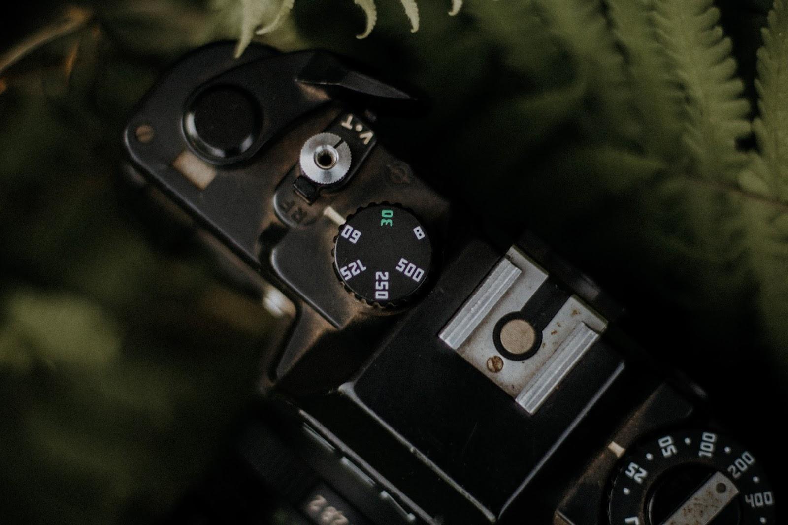 Comprei: Zenit 122. E é isso pessoal, esse post foi só para mostrar o meu mais novo brinquedo e como funciona. Ainda não revelei nenhum filme, mas quando for digitalizar as fotos, vou fazer um post com o resultado das fotos :)  Mas, qualquer pergunta que vocês quiserem fazer, opinião sobre o post ou contar se vocês tem costume de fotografar com câmeras analógicas é só deixar um comentário no post que vou ficar super feliz!