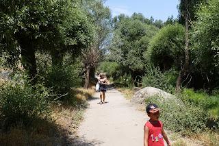 Parte de la familia caminando por el valle.