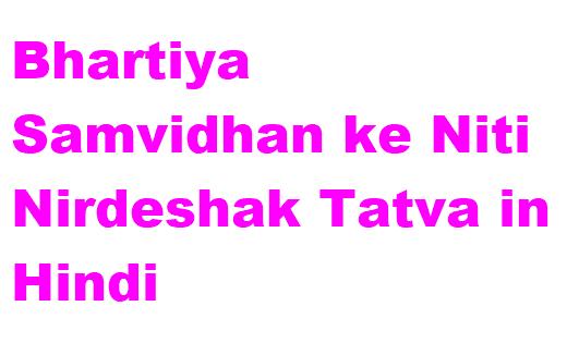Bhartiya Samvidhan ke Niti Nirdeshak Tatva in Hindi
