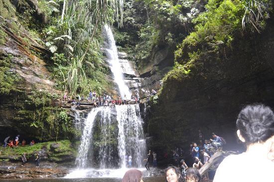 Air Terjun Batang Kapeh juga dikenal dengan Air Terjun Lubuk Bigau Air Terjun Batang Kapeh Tertinggi di Sumatera