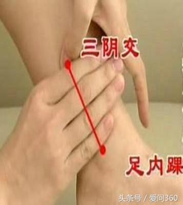 經常按摩腿部能保護肝臟!多按按這幾個地方能很好的養肝護肝(血液排毒)