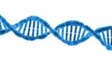 Istilah-Istilah Dalam Bioteknologi Pertanian Part 1 (A)