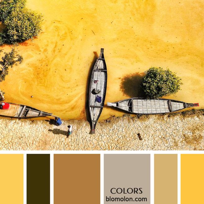 variedad_en_color_paletas_colores_2d