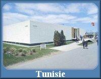 http://expo67-fr.blogspot.ca/p/le-pavillon-de-la-tunisie.html