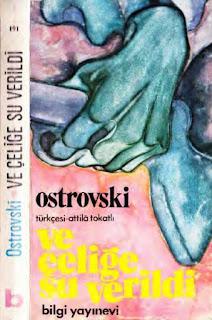 Nikola Ostrovski - Ve Çeliğe Su Verildi