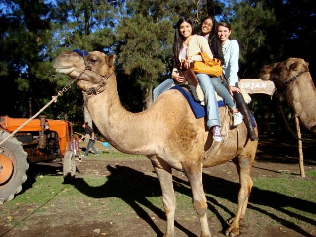 História do Zoológico de Luján