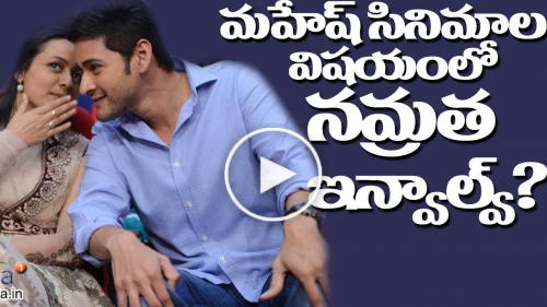 Namrata Involvement in Koratala and Mahesh Babu Movie