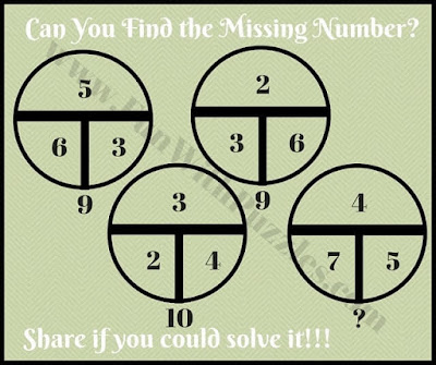 Math Circle Picture Puzzle for Teens