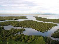 Berkenalan Dengan Object Wisata Danau Sentarum - Kalimantan Barat