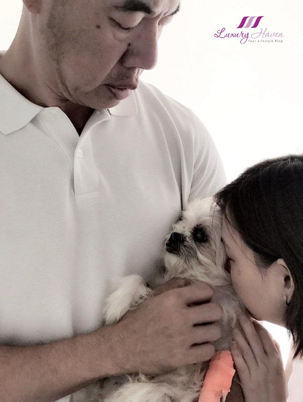 euthanasia putting your dog to sleep
