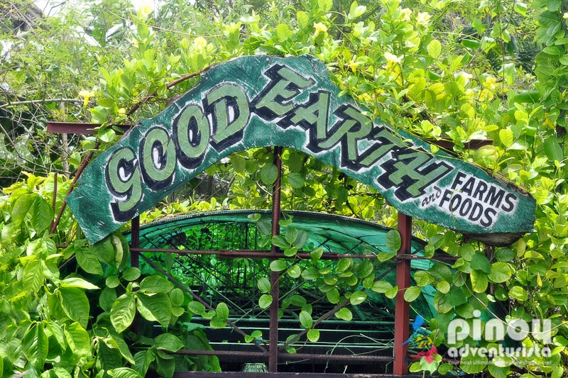Organic Dining Experience at Good Earth Garden Café in Tarlac City ...