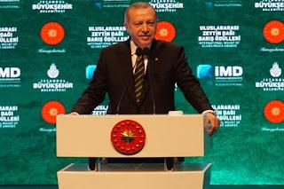 Kecam Israel, Erdogan Sindir Dunia Tak Peduli Penderitaan Palestina