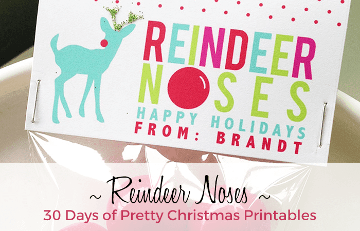 Reindeer Nose Printable