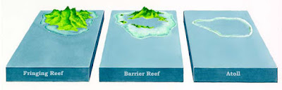 fringing reef, barrier reef, dan atoll
