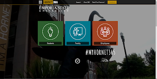 Hornet 365 homepage