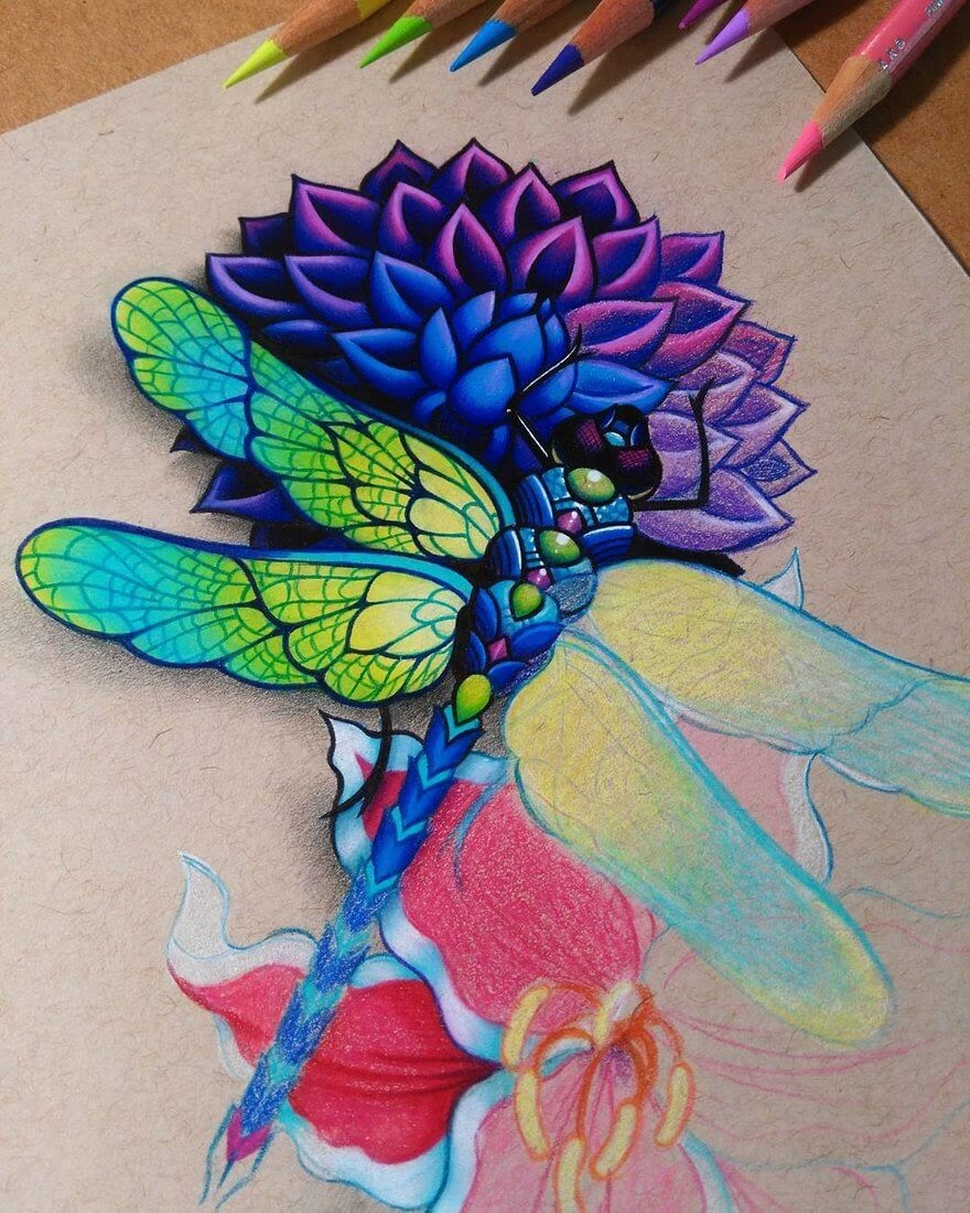 04-Dragonfly-WIP-Danielle-Washington-Brightly-Colored-Pencil-Drawings-www-designstack-co