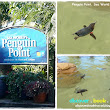 Sea World Gold Coast - Its Show Time! ~ Singapore Travel Blog - Hotel, Airline, Restaurant and Attraction Reviews - Discover . Book . Travel