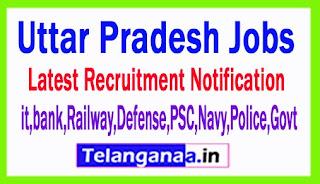 Latest Uttar Pradesh Government Job Notifications