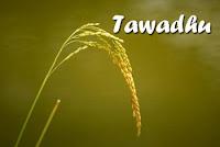 Penjelasan Tawadhu (Rendah Hati)