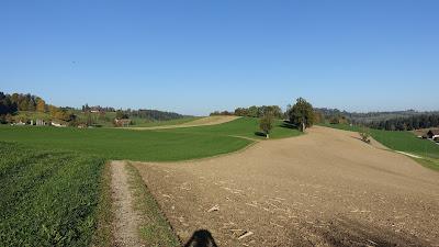 Schöner Weg oberhalb von Menznau