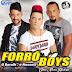 BAIXAR – Forró Boys – Volume 6 – Uma Nova História