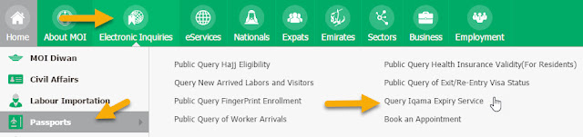 Query Iqama Expiry Service Related Keywords & Suggestions - Query