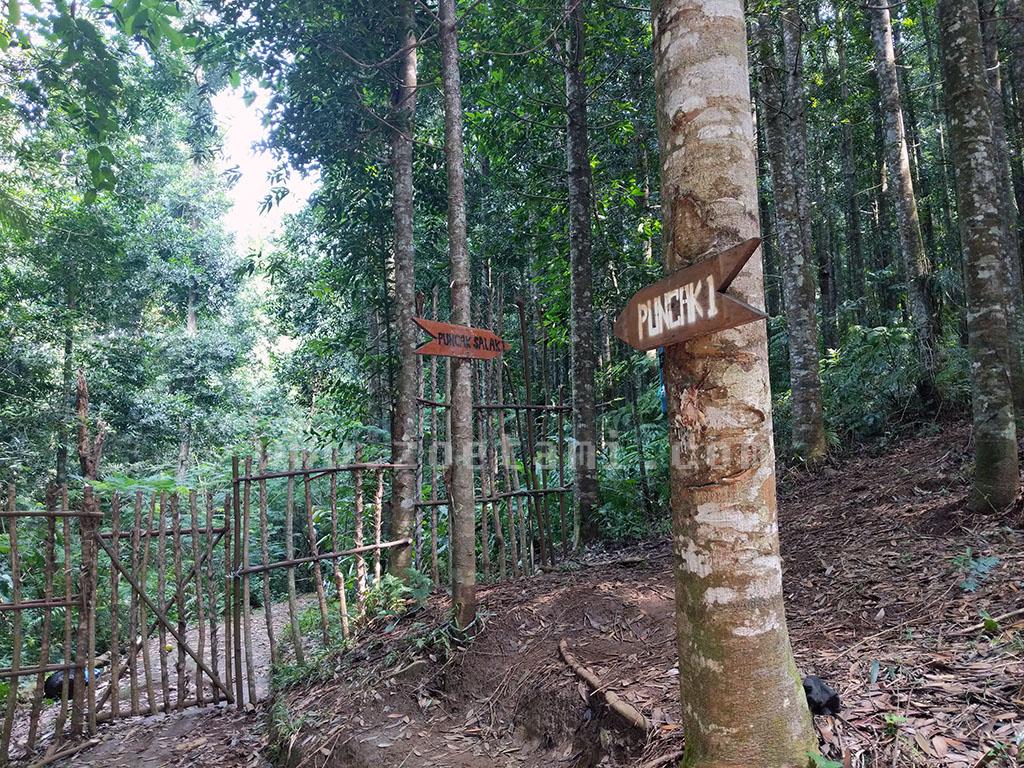Jalur Pendakian Gunung Salak via Cimelati