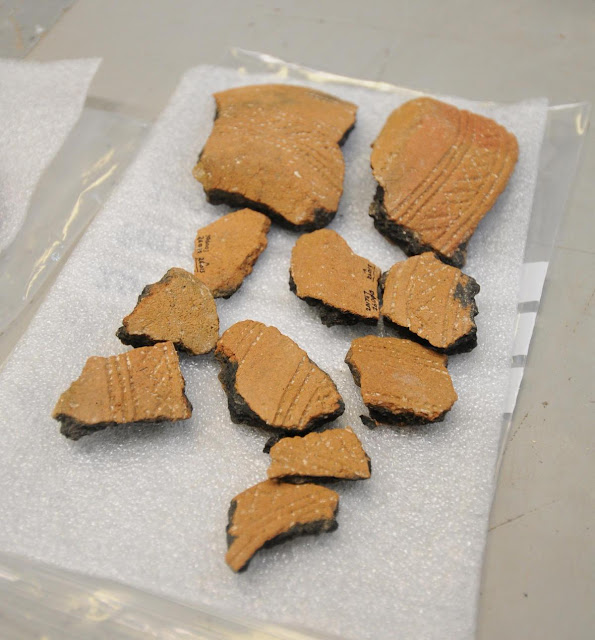Stonehenge tunnel dig finds examined by archaeologists