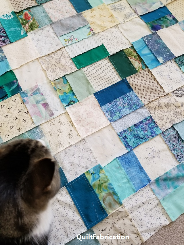 Winston inspecting quilt blocks