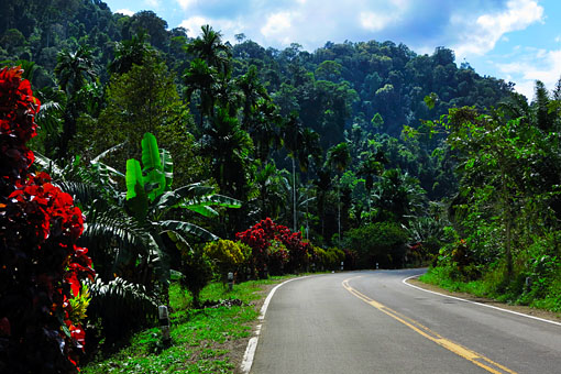 road between Chumphon and Ranong