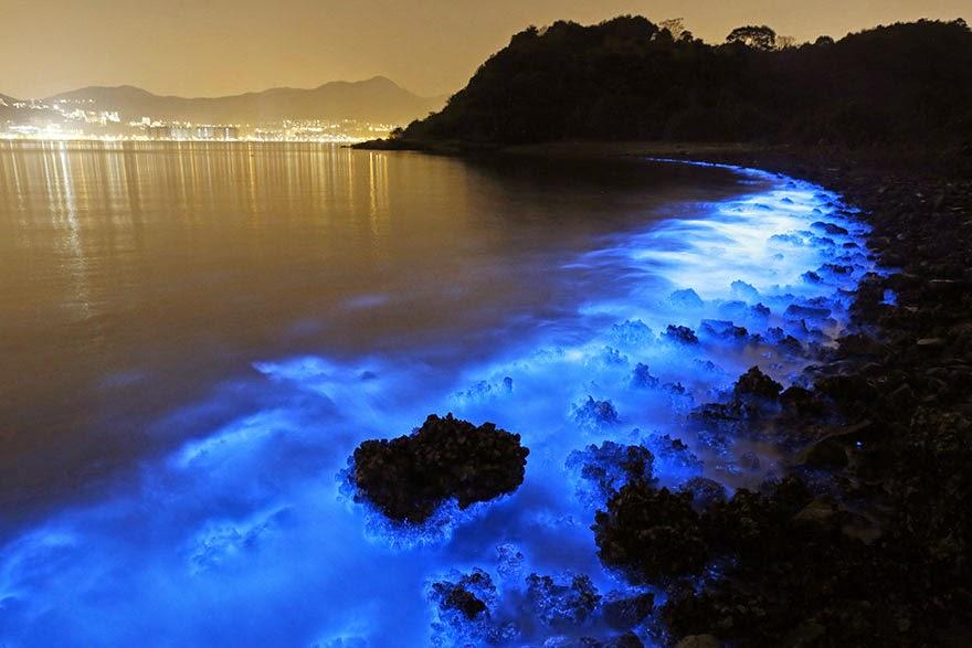 Šta se to sjaji na obalama Hong Konga?