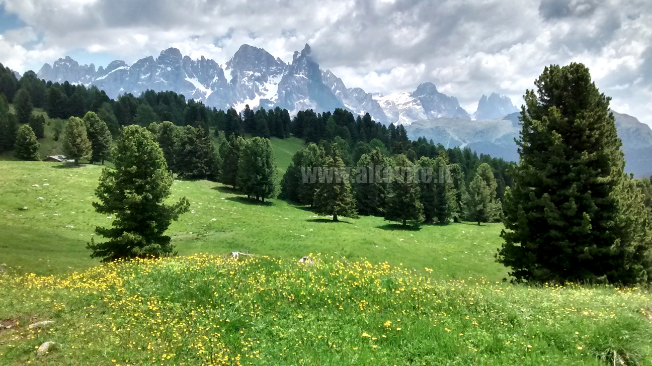 Alpi: le Dolomiti