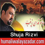 http://www.humaliwalayazadar.com/2016/10/shuja-rizvi-nohay-2017.html