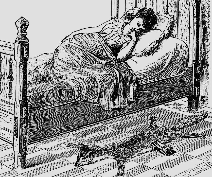 1878 bedroom illustration, foxskin rug